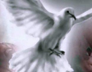 zaproszenie-na-wigilie-zeslania-ducha-swietego